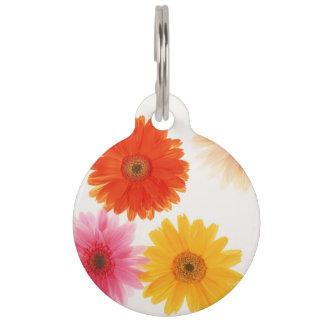 Gerbera Flowers Print Floating Flower Daisy Floral Pet Tag