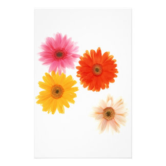 Gerbera Flowers Print Floating Flower Daisy Floral Stationery