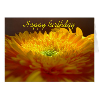 Gerbera Happy Birthday Card