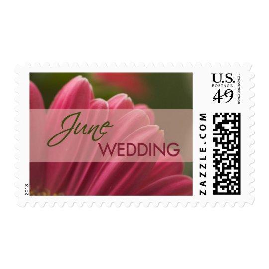 Gerbera June Wedding Stamps
