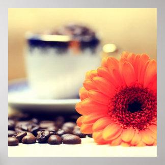 Gerbera Kaffeebohnen Impresiones