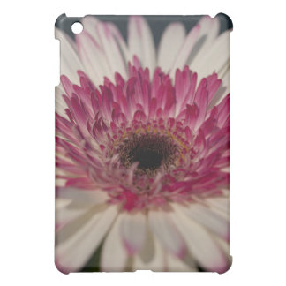 Gerbera Lollipop iPad Mini Cases