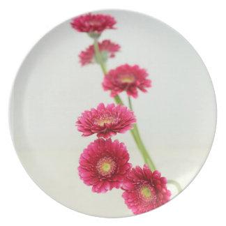 Gerbera pink Party Plates