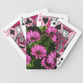 Gerbera rosado barajas de cartas