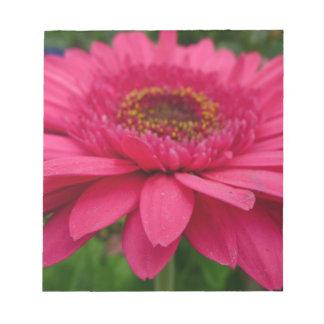 Gerbera rosado bloc de notas