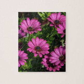 Gerbera rosado puzzles