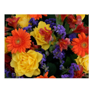 Gerbera Rose Bouquet Postcard