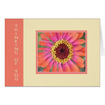Gerbera Thinking of You Cards
