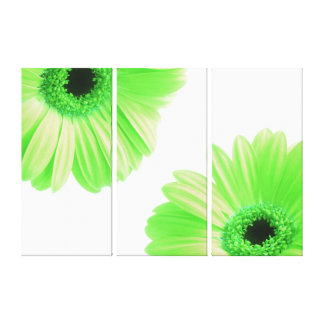 Gerbera Twins Green Stretched Canvas Prints