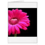 Gerbera with Heart Greeting Cards