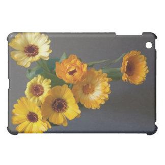 Gerberas, Bouquet iPad Mini Cover