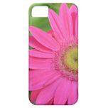 Gerberas rosados bonitos iPhone 5 Case-Mate coberturas