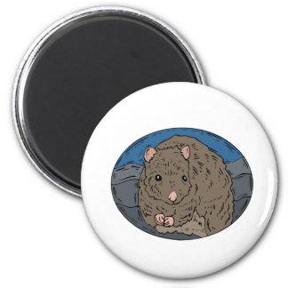 Gerbil 2 2 inch round magnet