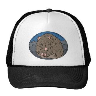 Gerbil 2 gorras de camionero