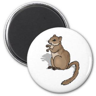 gerbil 2 inch round magnet