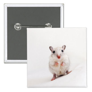 Gerbil Baby Animal Cute Pet Gerbils Template 2 Inch Square Button