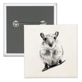 Gerbil Baby Animal Illustration Pet Gerbils 2 Inch Square Button