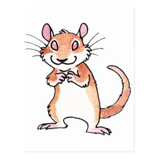 Gerbil Postcards | Zazzle