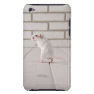 Gerbil standing iPod touch cover