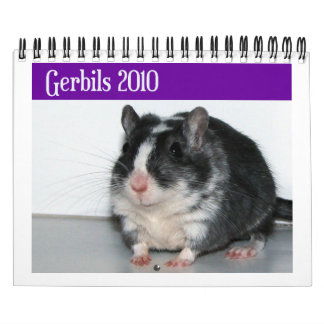 Gerbils Calendar Reprint
