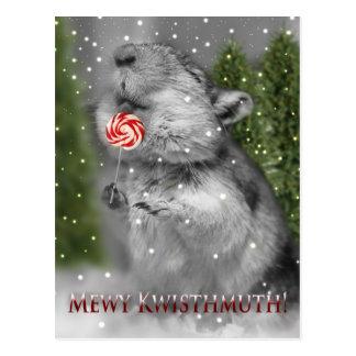 Gerbil's Christmas Dream Postcard