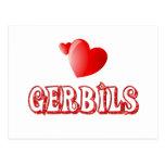 Gerbils Postcard