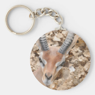 Gerenuk Key Chain
