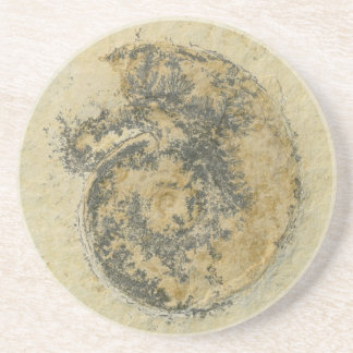 German Ammonite with Dendrites Drink Coaster