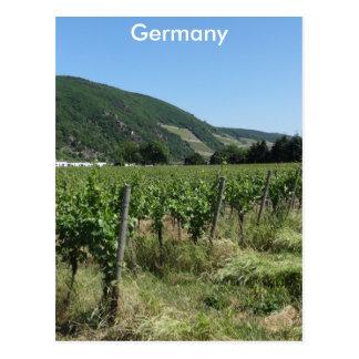 German Countryside Postcard