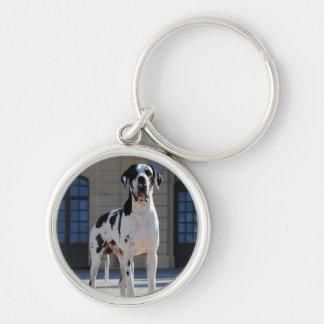 German Dogge gefleckt, great dane Key Chain
