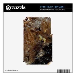 German fruit bread iPod touch 4G skin