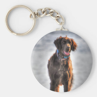 German Longhaired Pointer Dog HDR Photo Keychain