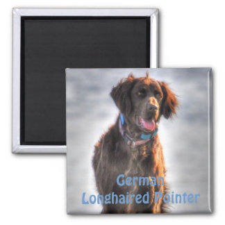 German Longhaired Pointer Dog HDR Photo Magnet