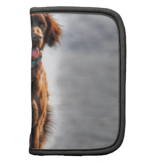 German Longhaired Pointer Dog HDR Photo Folio Planners