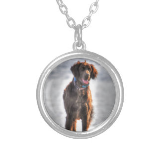 German Longhaired Pointer Dog HDR Photo Silver Plated Necklace