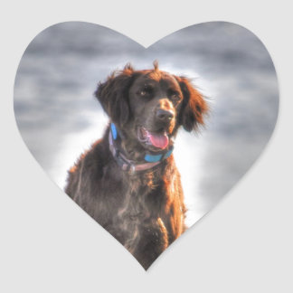 German Longhaired Pointer Dog HDR Photo Heart Sticker