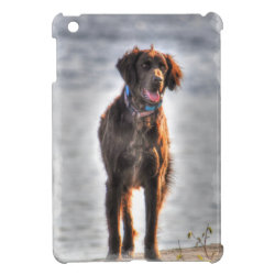 Case Savvy iPad Mini Glossy Finish Case with Pointer Phone Cases design