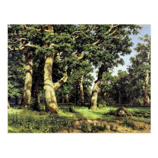 German Oaks Evening By Schischkin Iwan Iwanowitsch Postcard