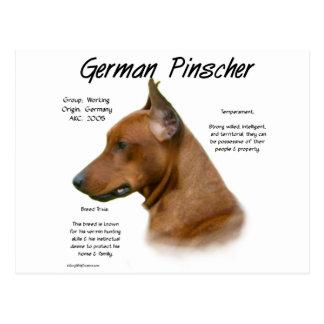 German Pinscher History Design Postcard