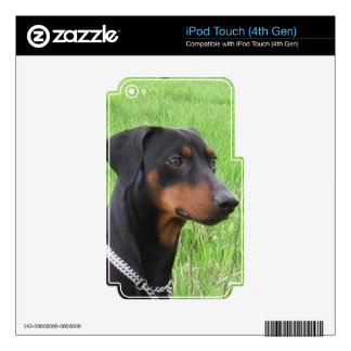 german pinscher.png decals for iPod touch 4G