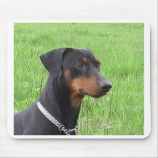 german pinscher.png mouse pad