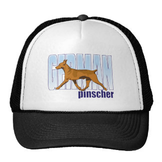 German Pinscher, red, moving Hats