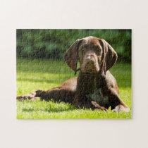 German Pointer Dog. Jigsaw Puzzle