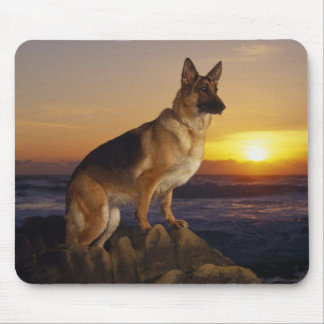 German Shepard At Sunset Mouse Pad