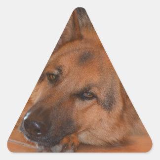 German Shepard ~ Design Stella Triangle Sticker