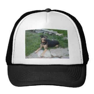 GERMAN SHEPARD MIX TRUCKER HAT