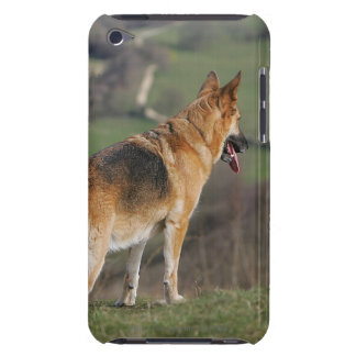 German Shephard Looking Down Hill Barely There iPod Cases