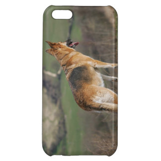 German Shephard Looking Down Hill Case For iPhone 5C