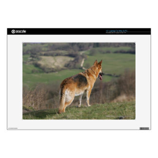 "German Shephard Looking Down Hill 15"" Laptop Decals"