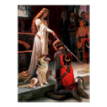 German Shepherd 1 -  The Accolade Poster
